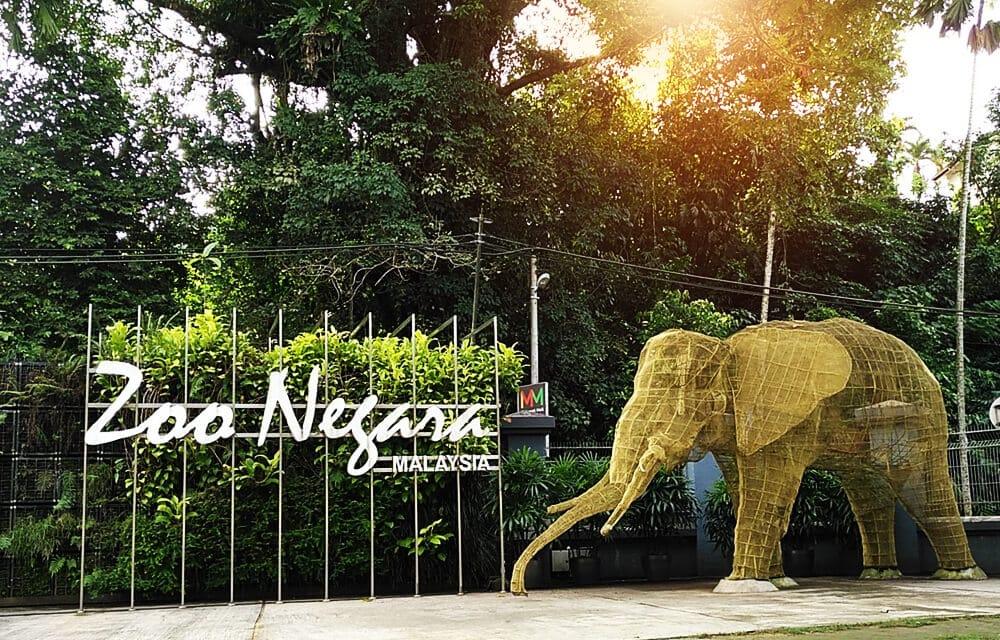 zoo negara 28 1 o - Melawati, hotspot kediaman tenang di Klang Valley